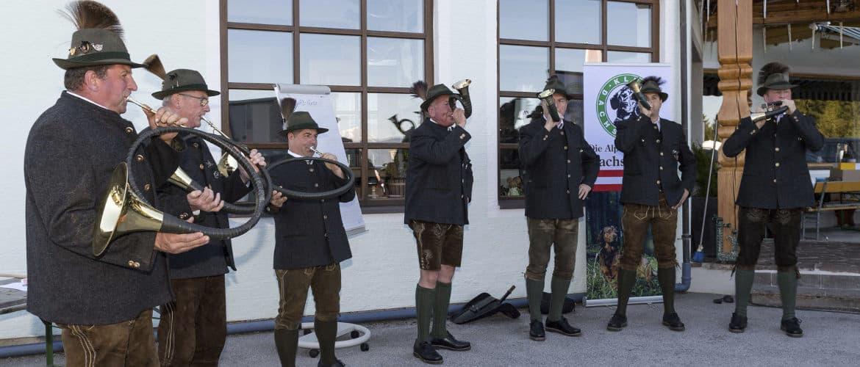 Internationale Zuchtschau - Klub Dachsbracke - 2017